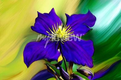 Fototapeta Nadmorski Kwiat