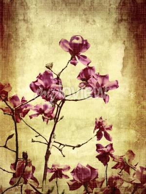 Fototapeta Krásný grunge pozadí s magnólie květiny