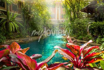 Fototapeta Jungle bazén stylu pod stromy a dům pozadí na slunce čas