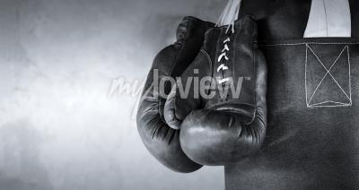 Fototapeta Boxing gloves