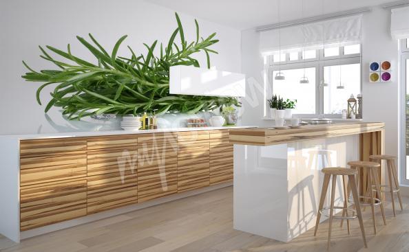 Fototapeta do kuchyně rostlina