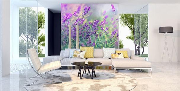 Fototapeta fialové květiny
