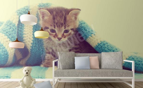 Fototapeta kočka v dětském pokoji