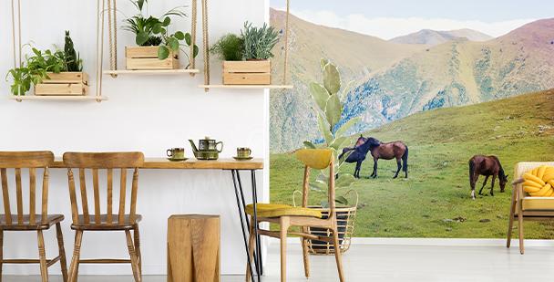 Fototapeta koně na horách