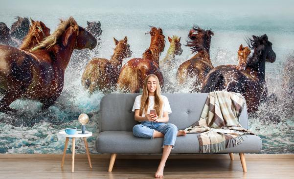 Fototapeta koně ve vodě