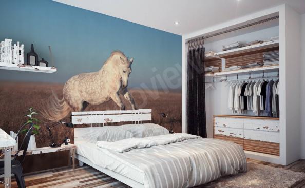 Fototapeta kůň na stěně