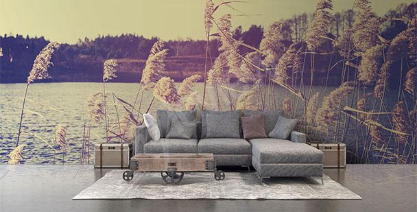 Fototapeta obývací pokoj příroda