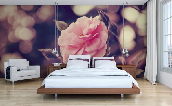 Fototapeta růže do ložnice