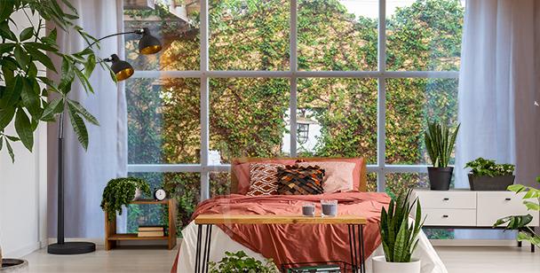 Fototapeta zeleň za oknem