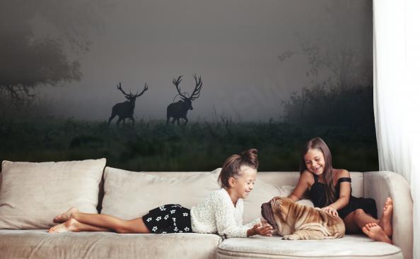 Fototapeta Zvířata - jelen v lese