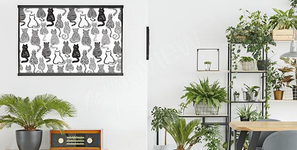 Kočičí plakát do salonu