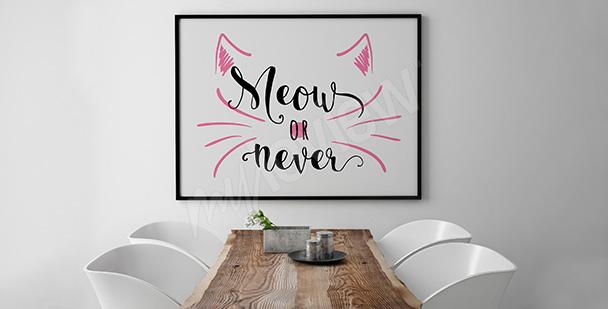 Minimalistický plakát s kočkou