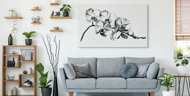 Obraz černobílé květiny