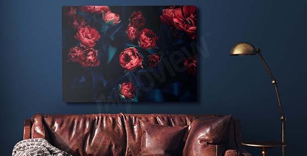 Obraz červené tulipány v přítmí