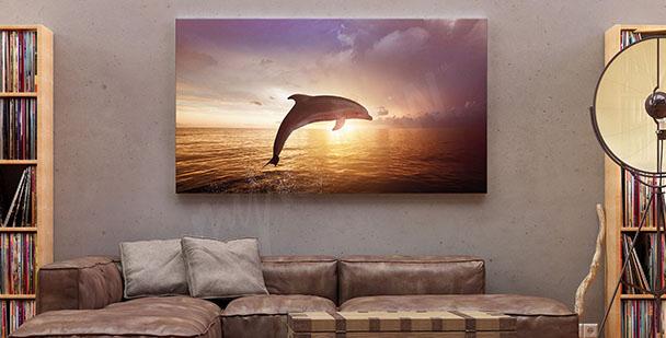 Obraz delfín a západ slunce