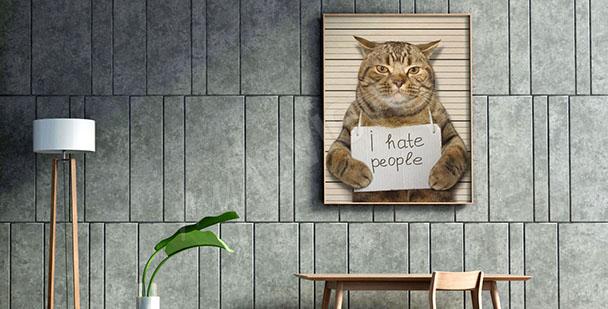Obraz kočka pro teenagera