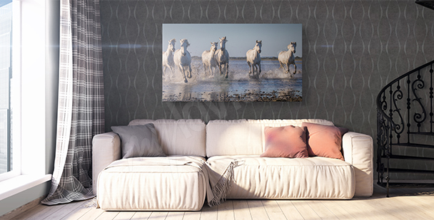 Obraz koně ve cvalu