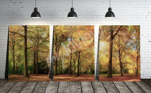 Obraz krajina podzim