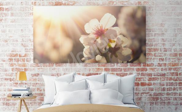 Obraz květiny - příroda
