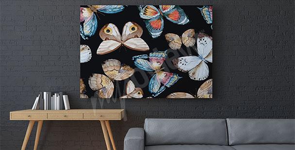 Obraz motýli na černém pozadí