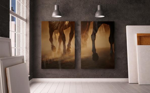 Obraz na stenu koně