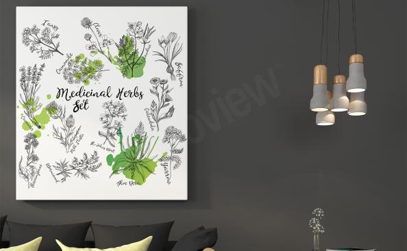 Obraz na zeď příroda - byliny