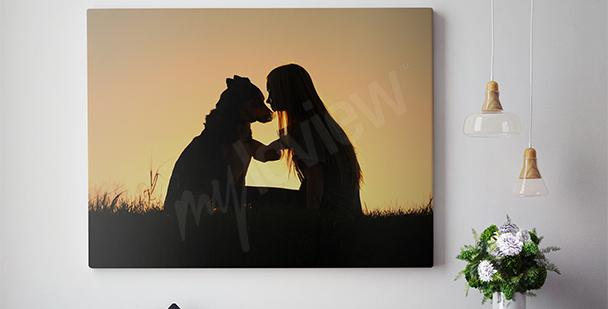 Obraz pes a žena