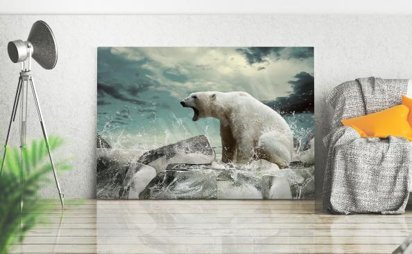 Obraz polární medvěd