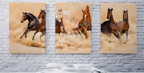 Obraz s koňmi triptych