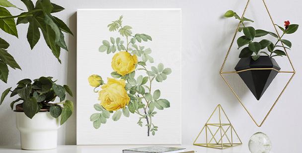 Obraz s květinovým akcentem