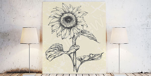 Obraz skica slunečnice
