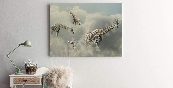 Obraz žirafy v oblacích