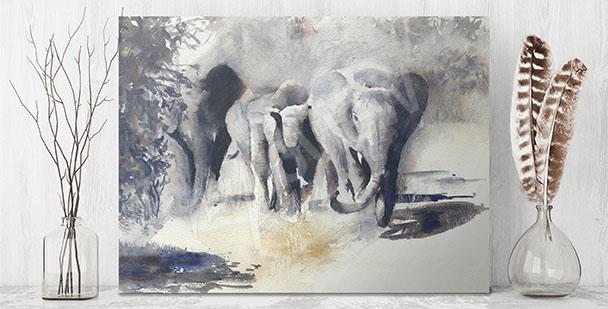 Obraz zvířata Afriky