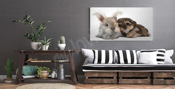 Obraz zvířata malované akvarelem