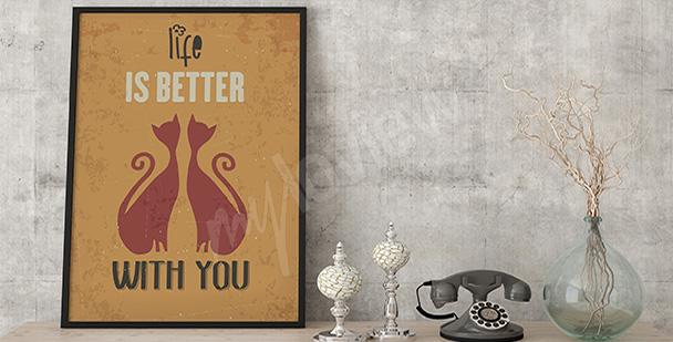 Plakát dvě kočky