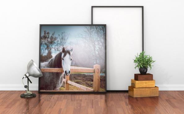 plakát koně v obývacím pokoji