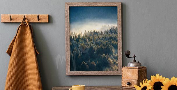 Plakát les v horách