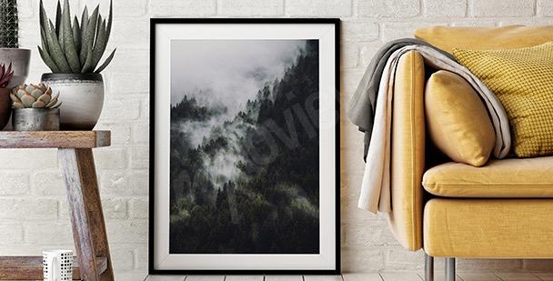 Plakát les v mlze