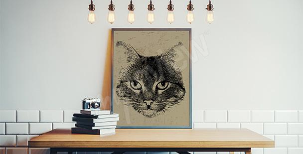 Plakát s kočkou vintage