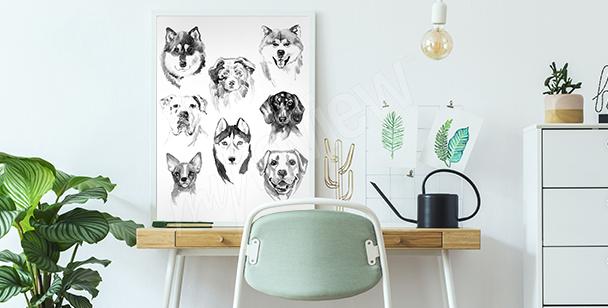 Plakát zvířata malovaná akvarelem