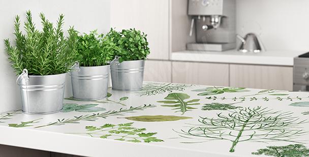 Rostlinná nálepka do kuchyně