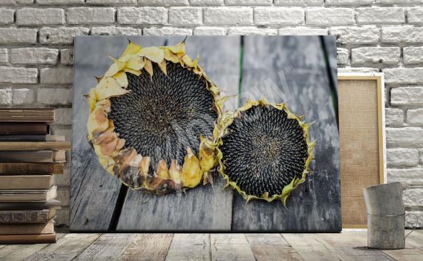 rustikální obraz slunečnice