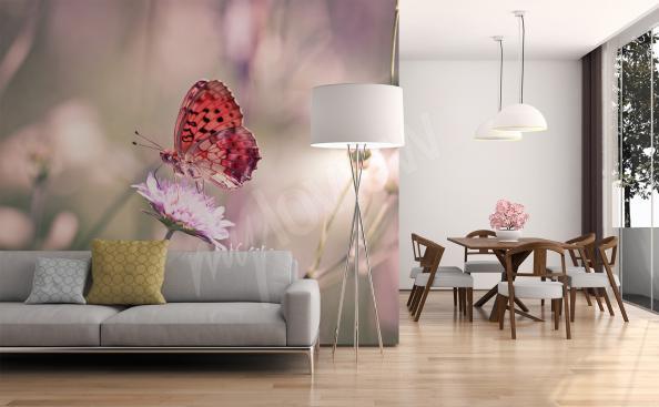 Tapeta na zeď motýli