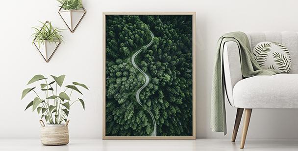 Zelený plakát příroda